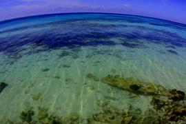 Dry Tortugas Seascape